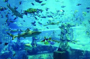 132_60_Aquaventure vstupenky Dubaj Atlantis podmorsky svet