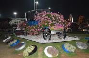 Miracle Garden v Dubaji