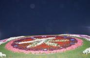 miracle garden hodiny Dubaj
